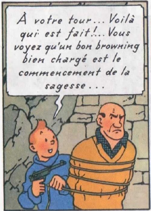les armes à feu célèbre dans la bande dessinée Tintin-sagesse2
